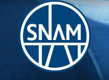 Data stacco e pagamento dividendi Snam 2013