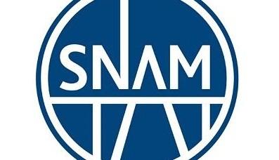 Acconto dividendo Snam esercizio 2013