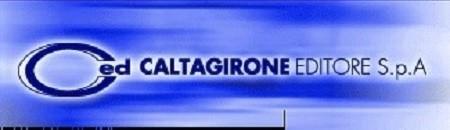 Caltagirone Editore risultati primo semestre 2014